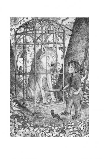Summer and friends find Glorious, the wolf, trapped in a cage