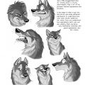 AV-Tani page #21, exaggerated canine expressions